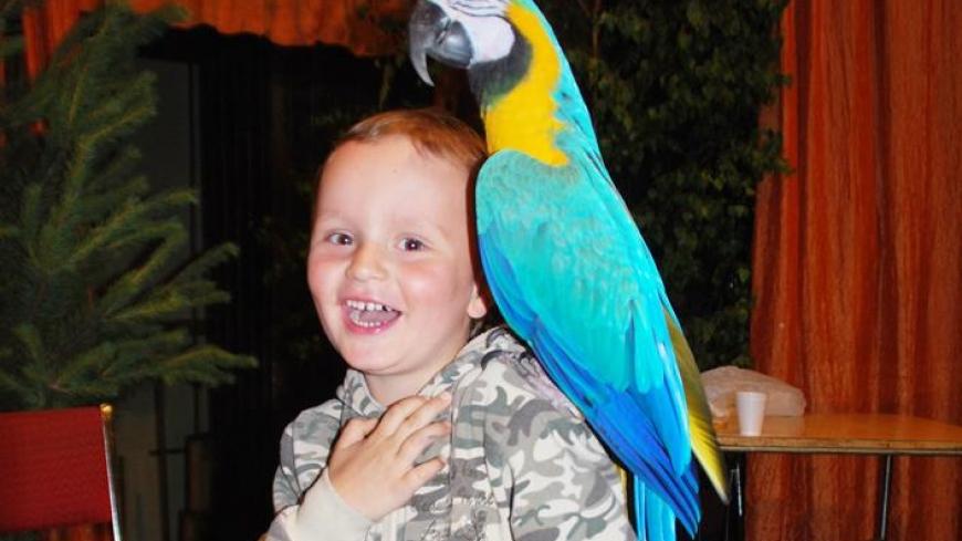 Wystawa Papug i Ptaków Egzotycznych